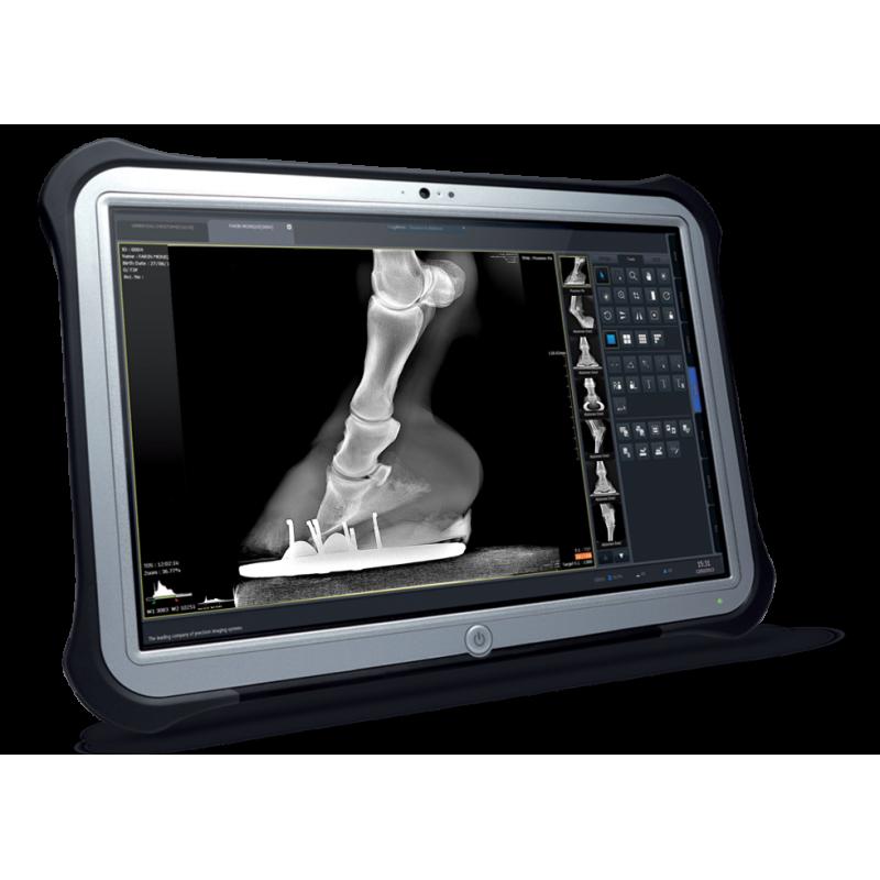 Exemple de Capteur plan portable pour radiologie équine
