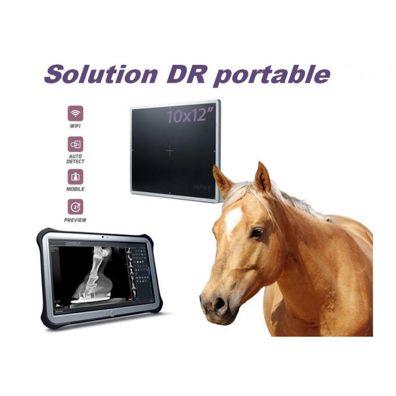 refleX - Capteur plan portable Wifi 24x30 CWC 10122 - Fiche de présentation de radiologie équine